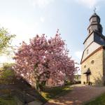 Wolfenhausen im Frühling