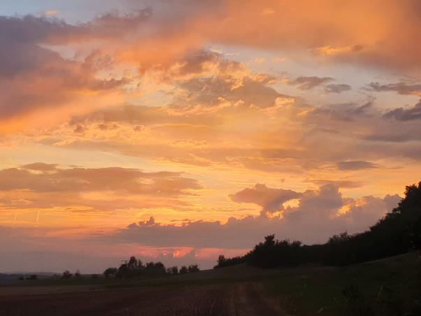 Farbenreicher Sonnenuntergang hinter schwarzer Natur-Siluette